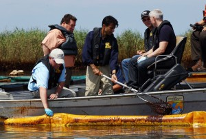 Anderson Cooper at Louisiana marshes